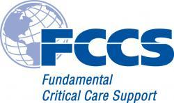 Critical Care Working Group (CCWG)